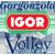 Agil Volley Novara